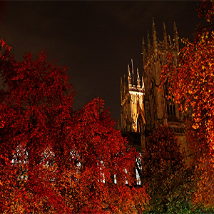 Off the beaten track attractions near our boutique hotel in York this autumn